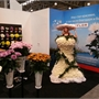 stand Deliflor3.jpg