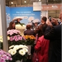 stand Deliflor2.jpg